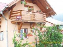 Accommodation Praid, Laski Guesthouse
