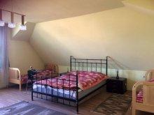 Accommodation Păuleni-Ciuc, Loriza Guesthouse