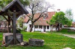 Bed & breakfast near Sükösd-Bethlen Castle, Contele Kalnoky B&B