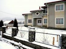 Accommodation Piatra Fântânele, Florea Guesthouse