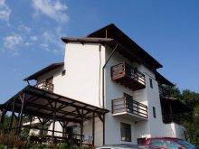 Accommodation Răzvad, Casa Badea Guesthouse