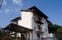 Cazare Podu Lung, Pensiunea Casa Badea