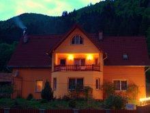 Cazare Transilvania, Casa de oaspeți Virágh Ibolya