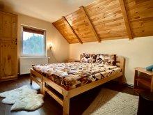 Accommodation Toplița, Scruba Chalet
