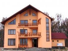 Panzió Máramaros (Maramureş) megye, Teleptean Panzió