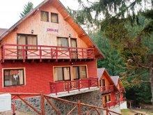 Accommodation Poiana Brașov, Liat Guesthouse