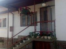 Accommodation Praid, Magdolna Apartment