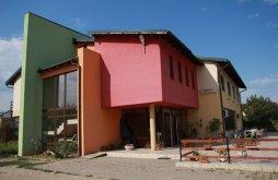 Cazare Dumbrăvița cu Vouchere de vacanță, Pensiunea Ana Maria