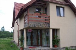 Accommodation Desești, Mara B&B