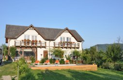 Chalet Argetoaia, Alegria Guesthouse