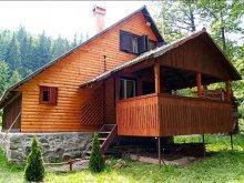 Accommodation Nuțeni, Boróka Chalet