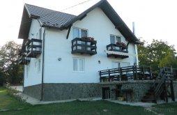 Villa Sohodol, Elder Villa