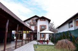 Apartman Valea Borului, Dely_Cios Panzió