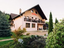 Accommodation Sucevița, Casa Rares B&B