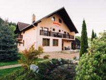 Cazare Botoșani, Pensiunea Casa Rares