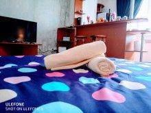 Accommodation Satu Nou, City Break Apartment