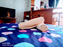 Cazare Satu Nou, City Break Apartament