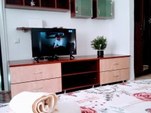 Cazare Satu Nou, Apartament Central Economy