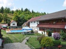 Accommodation Făgăraș, Andreea Guesthouse