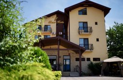 Hotel near Prislop Monastery, Best Hotel