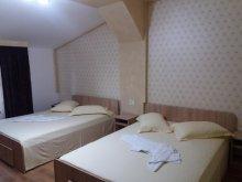 Apartman Pleșoiu (Livezi), Lipianu Vendégház