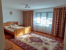 Accommodation Mănăstirea Humorului, Laur Guesthouse