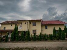 Panzió Szatmár (Satu Mare) megye, Elena Vendégház
