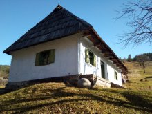 Accommodation Barațcoș, Törökök Mountain Paradise