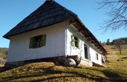 Kulcsosház Tarnița, Török kő k ÖKO Porta