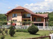 Casă de vacanță Pleșoiu (Nicolae Bălcescu), Casa de Vacanta Madalina