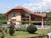 Vacation home Pietrișu, Madalina Guest House