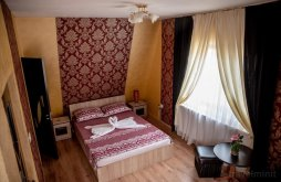 Accommodation Peștișani, Casa Robi Guesthouse