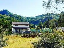 Accommodation Bistrița, Căsaru Chalet