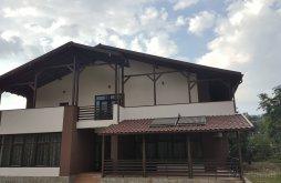 Accommodation Blidari (Dumitrești), A&A Guesthouse