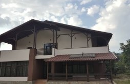 Accommodation Dumitreștii-Față, A&A Guesthouse