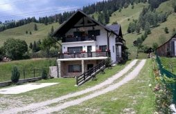 Vacation home Fundu Moldovei, Cristina Guesthouse