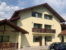 Apartment Piscu Mare, Bradet Guesthouse