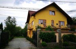 Accommodation Cărpiniș, Ramona Guesthouse