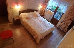 Accommodation Tălmăcel, Casa Presecan Guesthouse