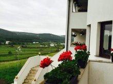 Panzió Szucsáva (Suceava) megye, Andrei Agroturisztikai Panzió