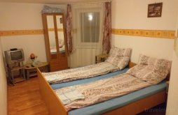 Accommodation Tălmaciu, Poiana Soarelui B&B
