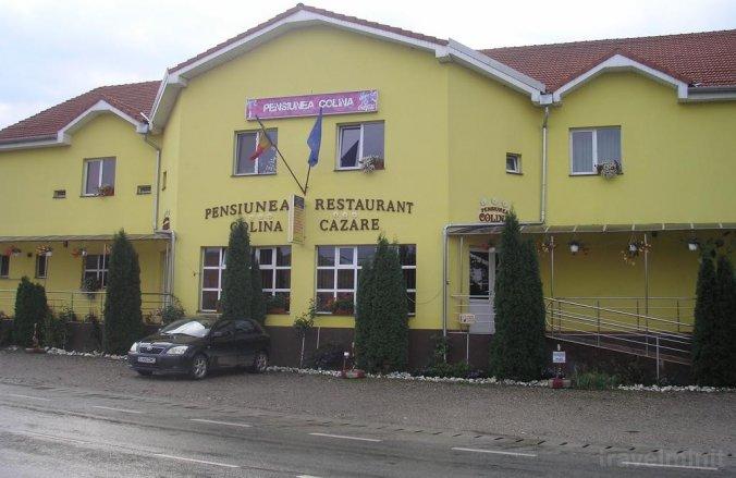 Colina B&B Crișeni