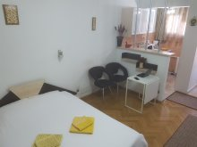 Apartman Puțu cu Salcie, Calea Victoriei Residence Apartman