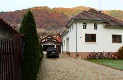 Accommodation Șugag, Casa Iulia Guesthouse
