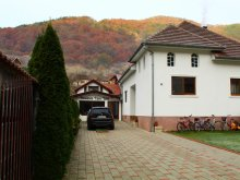 Panzió Sebeskápolna (Căpâlna), Casa Iulia Panzió