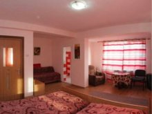 Accommodation Vaslui county, Ana Villa