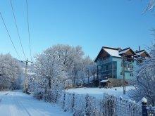 Casă de vacanță Pleașa, Casa de vacanță La Vălucu