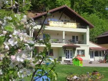 Discounted Package Transylvania, 7 Stairs Canyon Villa