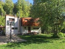 Casă de oaspeți Satu Nou (Ocland), Casa Wild Rose