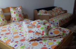 Guesthouse Stamate, Bicazu Guesthouse